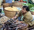 Au marché de Nyaung Oo