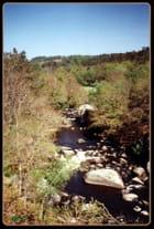 Dans la vallée coule la rivière