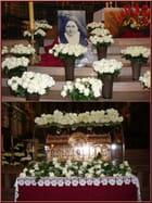 Aujourd'hui, pluie de roses blanches pour la petite sainte normande