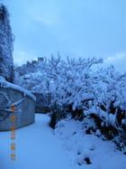 Aureille sous la neige fevrier 2015