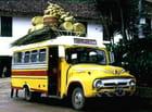 Autobus des paniers