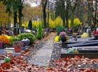 Automne au cimetière
