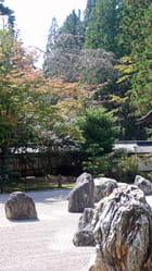 Automne au jardin zen