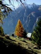 Automne dans les Alpes