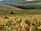 Automne en Haut-Beaujolais