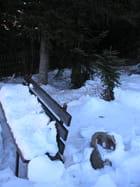 Banc de neige