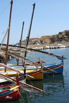 Barques Catalane