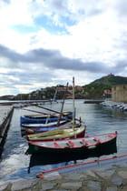 Barques catalanes