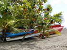 barques colorées
