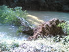 Barrage naturel