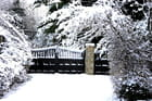 Barrière au  jardin