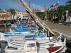 Bateaux de pêche typiques de Méditerranée : les pointus