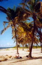 Belle plage ...