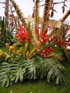Belle présentation florale