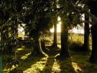 Belouve (lever de soleil)