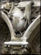Bestiaire à Notre-Dame