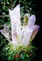 Blanc pur du cristal de roche