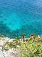 Bleu lagon