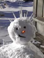 Bonhomme de neige narquoi