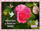 Bonne fête à toutes les Marie - 15/08/2014