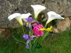 Bouquet.........