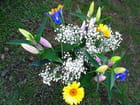 Bouquet (88)