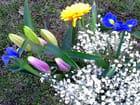 Bouquet (90)