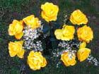 Bouquet (92)