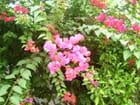 Bouquet indien