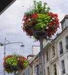 Bouquets saint-germanois