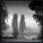 brouillard 2