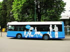 Bus d'Europe - Ville de LOURDES.
