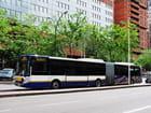 Bus d'Europe - Ville de Toulouse