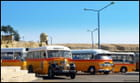Bus maltais (1)