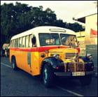 Bus maltais (2)