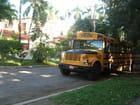 Bus scolaire à Miramar, La Havane