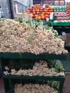 By Market à Ottawa, Ontario