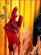 un gant d'artiste ou de soubrette...MM