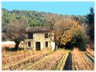 Cabane provençale