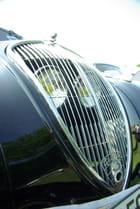 Calandre Peugeot