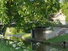 Canal du Centre à Palinges