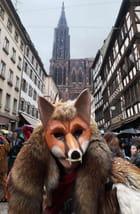 Carnaval de Strasbourg 2013 2