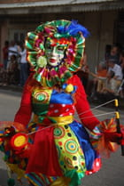 Carnaval haut en couleur