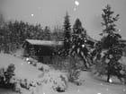 Carte postale Norvégienne de Noël