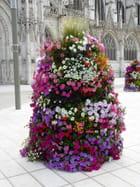 Cascade de fleurs sur le parvis de la cathédrale