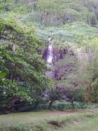 Cascades (1)