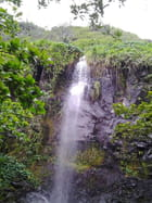 Cascades (2)