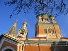 Cathédrale orthodoxe russe Saint-Nicolas (13)