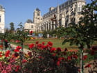 Cathédrale vue du jardin