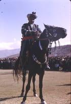 Cavalier afghan
